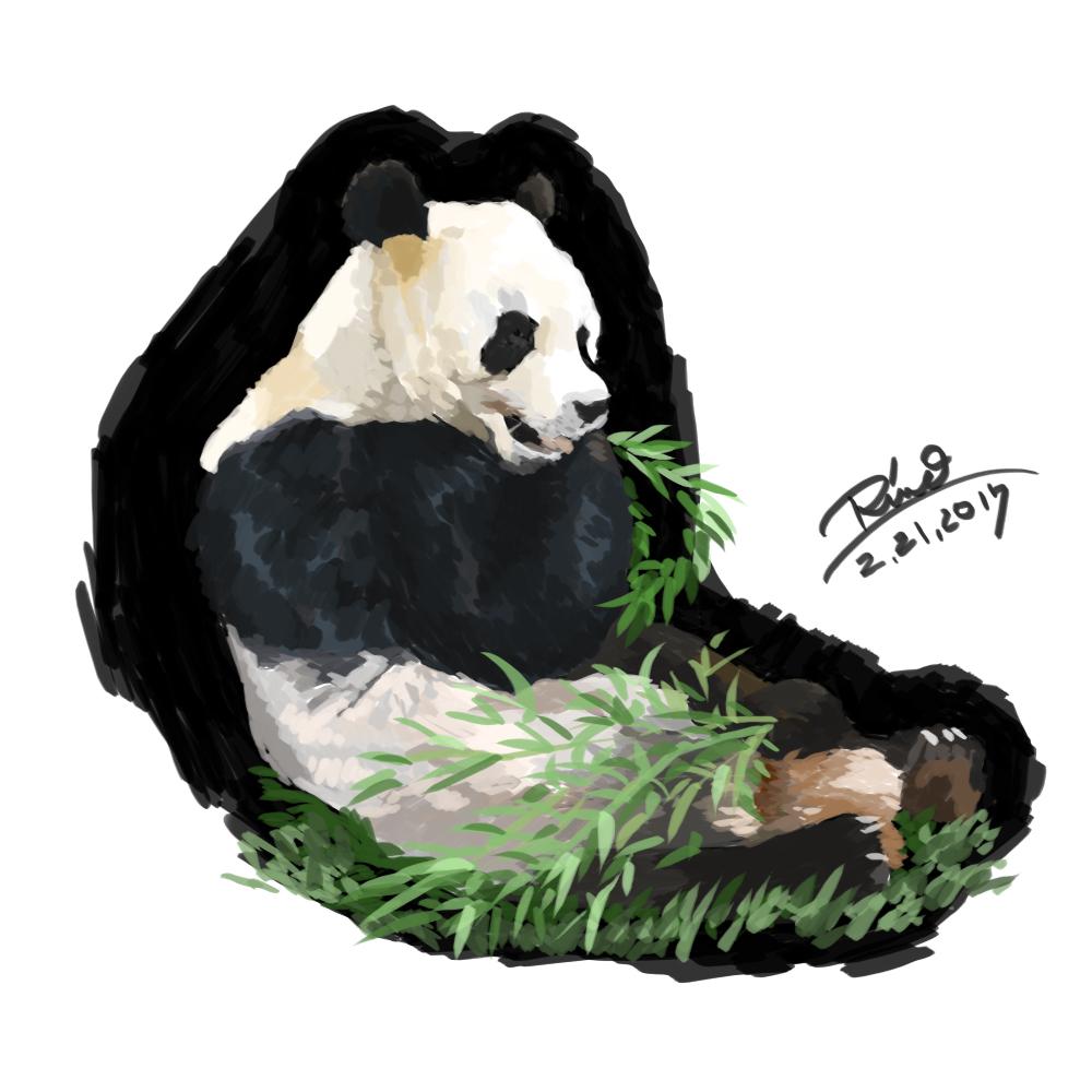【花冠シリーズ】食いしん坊パンダさん