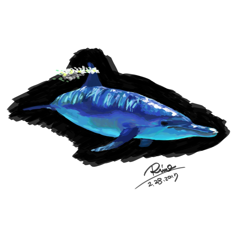【花冠シリーズ】イルカさん